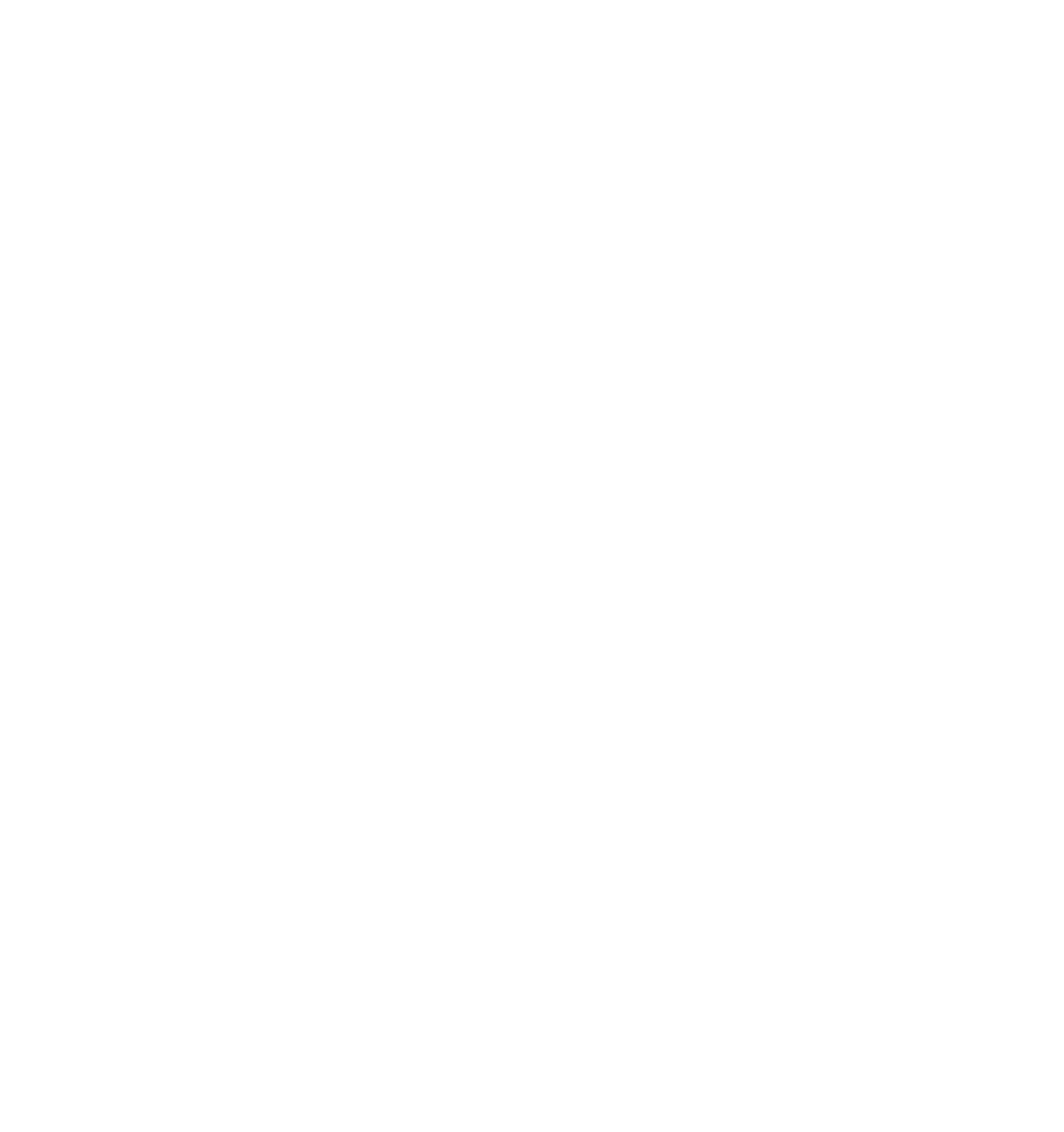 Online-Business-Beratung